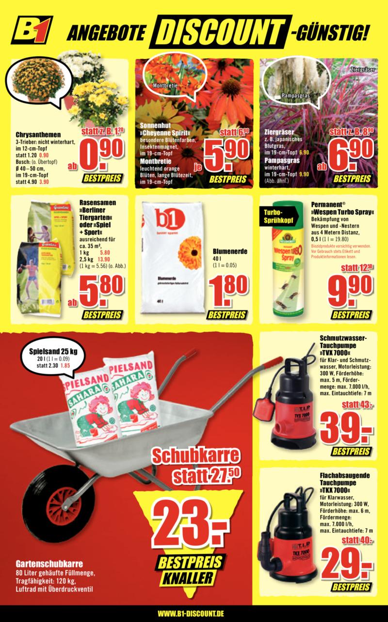 B1 Discount Prospekt vom 17.08.2019, Seite 5