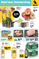 NETTO Supermarkt Prospekt vom 23.06.2016
