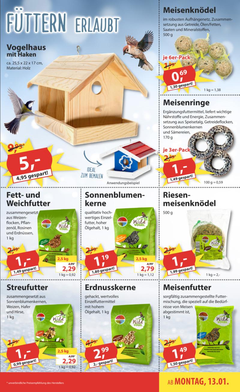 Sonderpreis Baumarkt Prospekt vom 13.01.2020, Seite 12