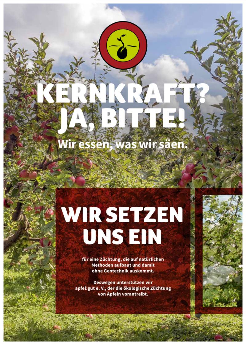denn's Biomarkt Prospekt vom 06.11.2019, Seite 13