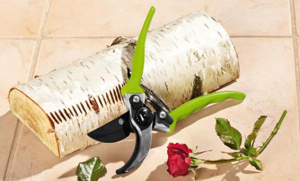 florabest garten und rosenschere von lidl ansehen. Black Bedroom Furniture Sets. Home Design Ideas