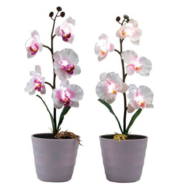 led kunstblume orchidee von kodi ansehen. Black Bedroom Furniture Sets. Home Design Ideas