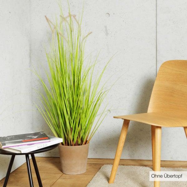 k nstliches gras k nstliche pflanze von aldi nord ansehen. Black Bedroom Furniture Sets. Home Design Ideas