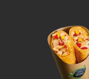Wrap Falafel-Houmous, Thunfisch