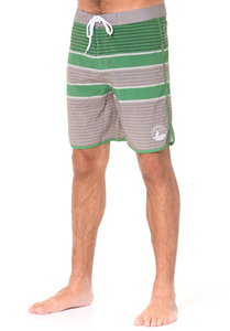 Lakeville Mountain Striped Performance - Boardshorts für Herren - Grün