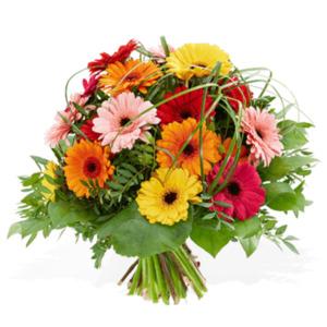 Die besten Glückwünsche - | Fleurop Blumenversand
