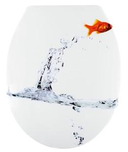 Badkomfort WC-Sitz mit Absenkautomatik, Goldfisch