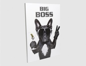 Bild Big Boss