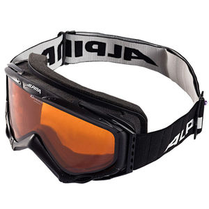 Alpina Skibrille 9.0 DLH