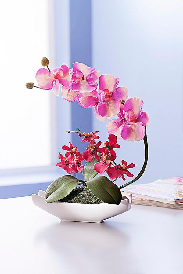Deko Orchidee In Keramikschale Von Weltbild Ansehen Discounto De