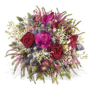 Herbstmomente - | Fleurop Blumenversand