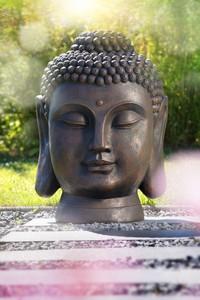Powertec Garden Buddha Kopf groß