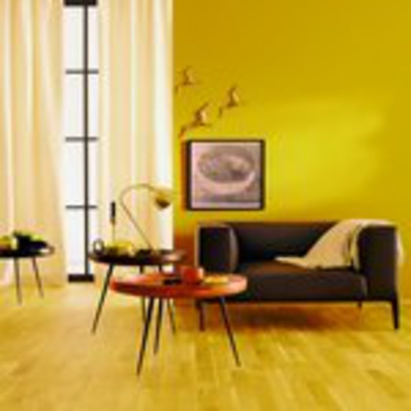 sch ner wohnen farbe sw trendfarbe matt india 1 l von toom ansehen. Black Bedroom Furniture Sets. Home Design Ideas