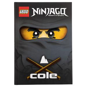 LEGO Ninjago-Buch