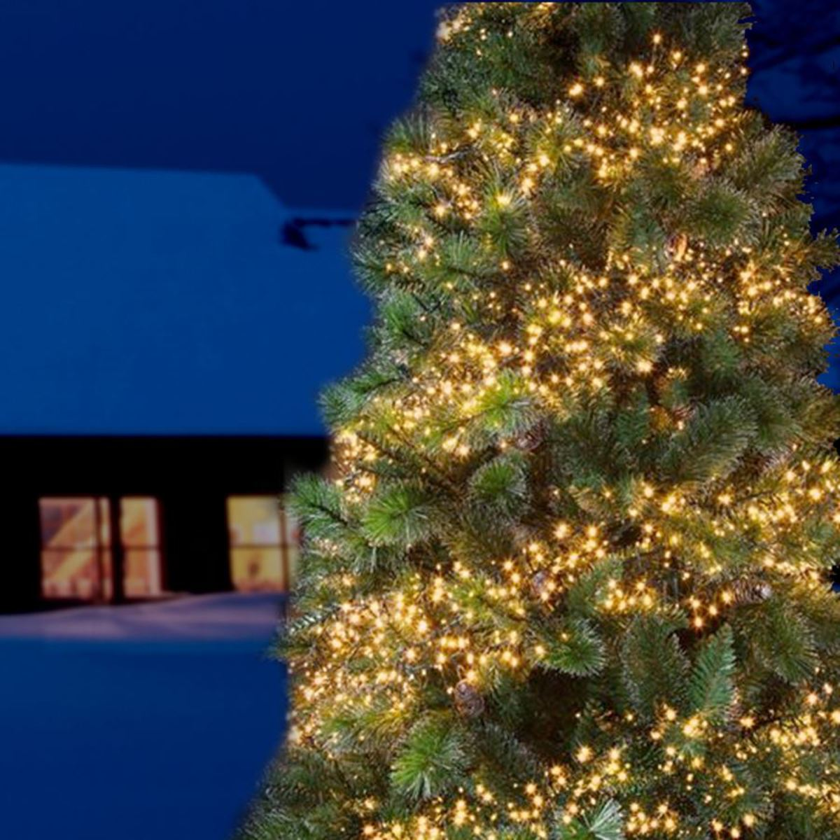 Bild 2 von LED-Cluster-Lichterkette 1152 LEDs