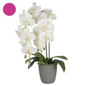 Deko-Blume Orchidee im Topf