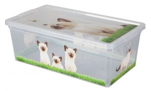 Aufbewahrungsbox - Katzenbabies - 6L