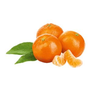 Blatt-Clementinen