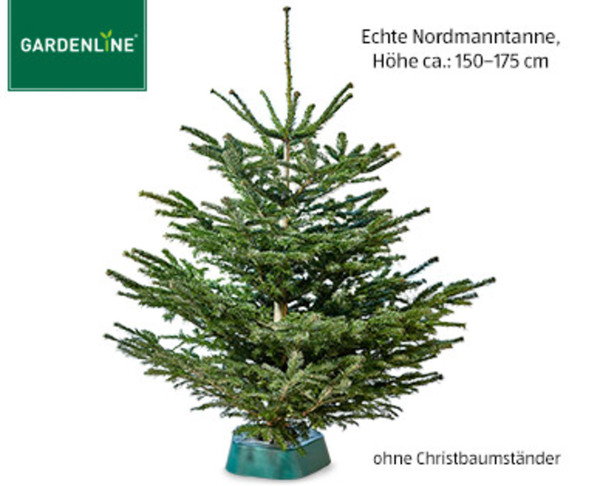 aldi sud weihnachtsbaum holz europ ische weihnachtstraditionen. Black Bedroom Furniture Sets. Home Design Ideas