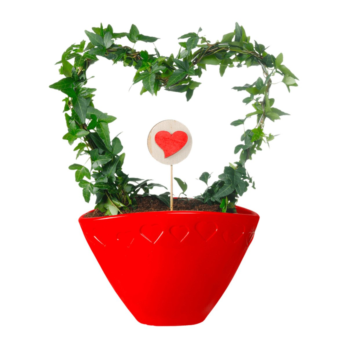 Bild 5 von GARDEN FEELINGS   Valentinstag-Arrangement