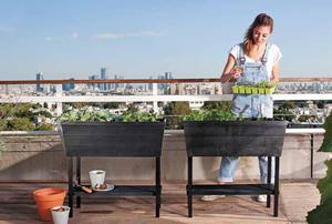 Hochbeet Urban Bloomer