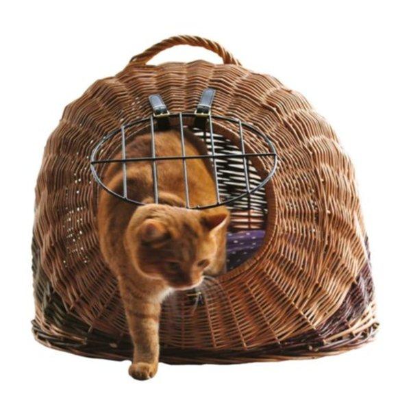 Angebote von Katzen Transport