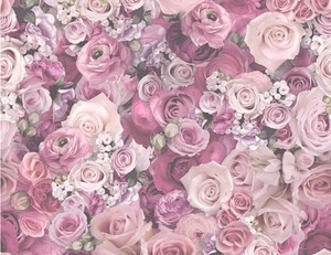 Tapete Vlies Blume Rosa