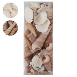 Deko-Muscheln 130 g weiß