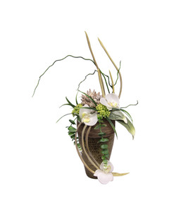 Arrangement Orchidee in einer Vase