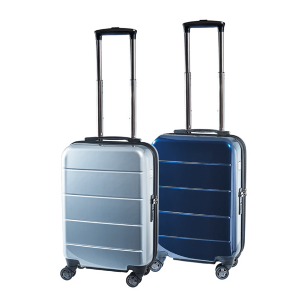 ROYAL LIFE  	   Trolley Boardcase in Metallic-Optik