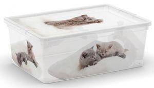 Ordnungsbox mit Deckel - Katzenbabies - S
