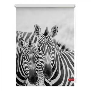 Lichtblick Rollo Klemmfix, ohne Bohren, blickdicht, Zebra - Weiß Türkis, 120 cm x 150 cm (B x L)