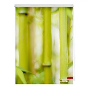 Lichtblick Rollo Klemmfix, ohne Bohren, blickdicht, Bambus - Grün, 90 x 150 cm (B x L)