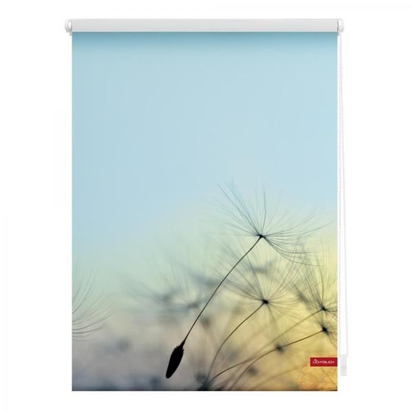 Lichtblick Rollo Klemmfix, ohne Bohren, blickdicht, Pusteblume - Blau, 45 x 150 cm (B x L)