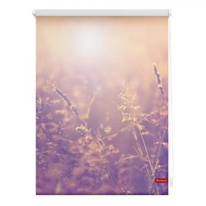 Lichtblick Rollo Klemmfix, ohne Bohren, blickdicht, Sommerabend - Orange, 45 x 150 cm (B x L)