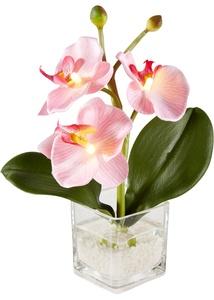 LED Orchidee (1er-Pack)