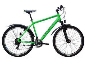 Ciclista Adventure 26 Herren 2017 | 43 cm | grün blau