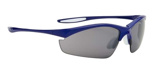 Alpina Tri-Effect Brille | blau