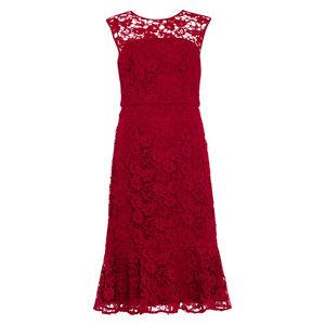 Phase Eight Damen Kleid Sabby mit Spitze, dunkelrot, 42