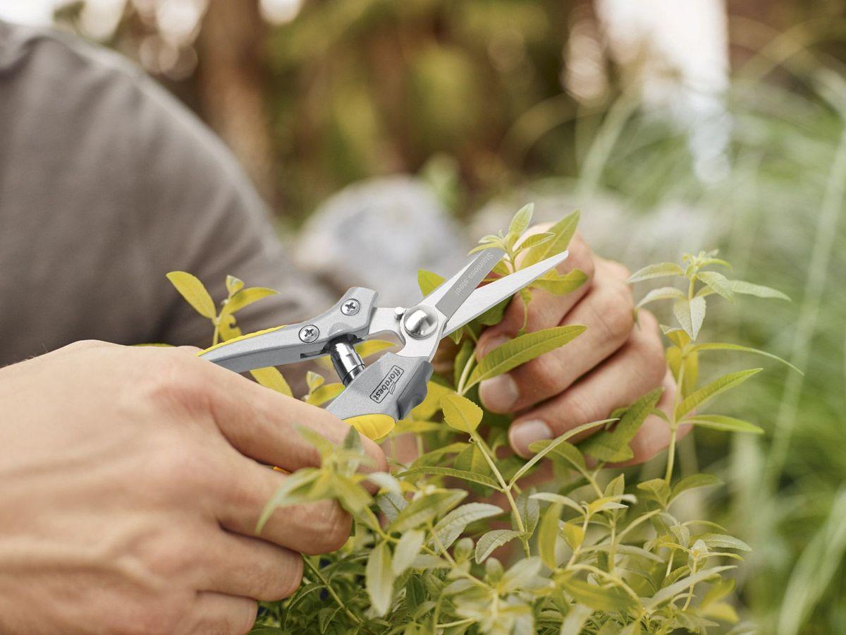 Bild 2 von FLORABEST® Garten-Präzisionsschere