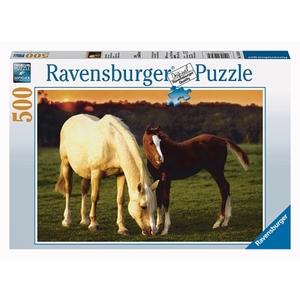 Ravensburger - Puzzle: Schöne Pferde, 500 Teile