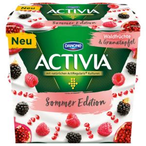 Danone Activia Sommer Edition Waldfrüchte und Granatapfel 4x115g