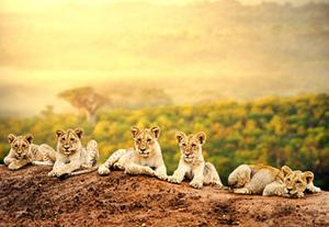 Namibia  Naturerlebnis Namibia