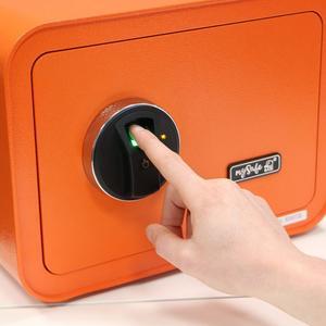 Tresor - mySafe BASI® 430 FP