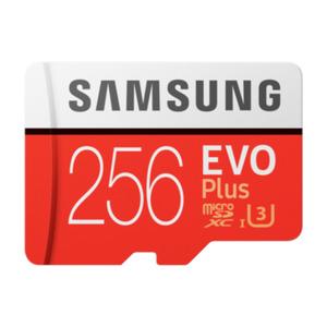 Samsung Evo Plus 256 GB microSDXC Speicherkarte (100 MB/s, Class 10, UHS-I, U3)
