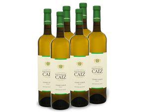 6 x 0,75-l-Flasche Weinpaket Encostas de Caiz Grande Escolha Vinho Verde, Weißwein