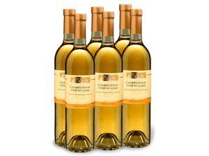 6 x 0,75-l-Flasche Weinpaket Chardonnay Terre Siciliane IGP, Weißwein