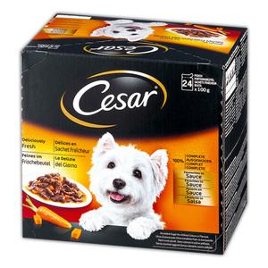 CESAR Hundenassnahrung