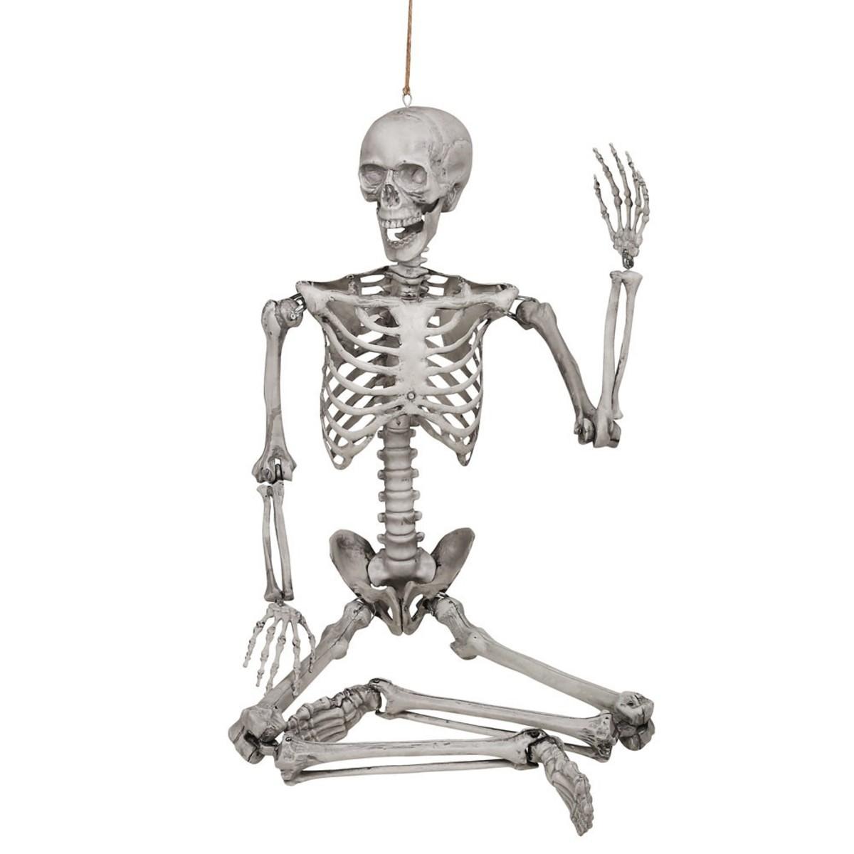 Bild 2 von Großes Halloween Skelett