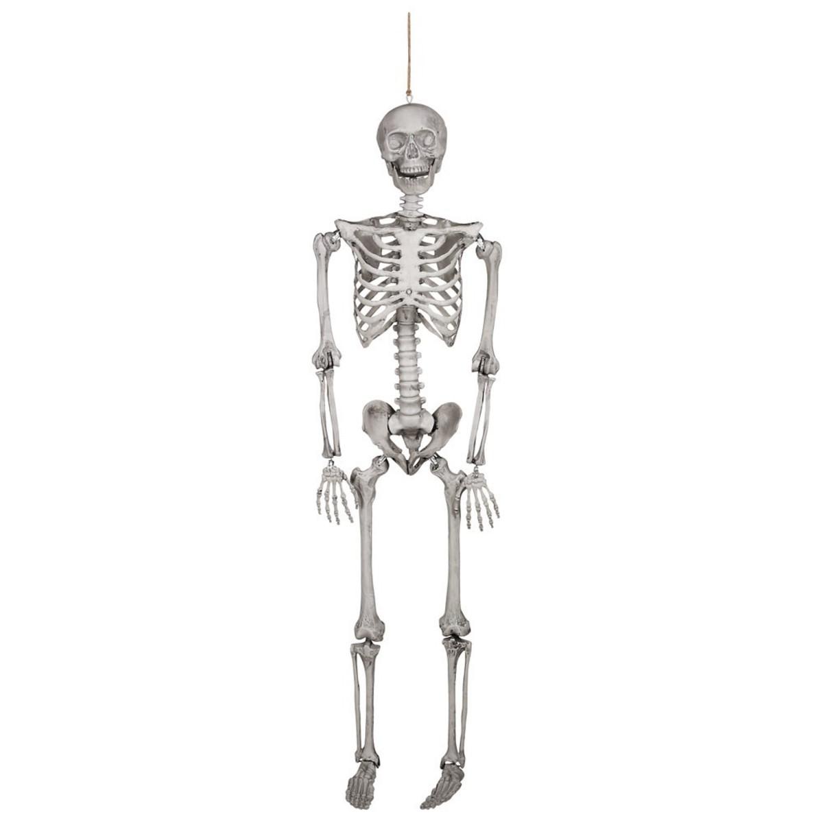 Bild 3 von Großes Halloween Skelett